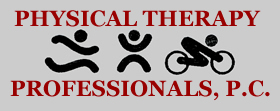 Physical Therapy Professionals, PC
